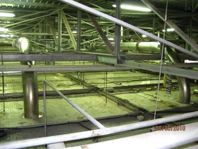 Réseau de tuyauteries dans abattoir